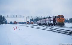 Lineup (evanlofback) Tags: railroadbnsf spokanesub enginebnsf bnsf6591 gevo h3 dpu grain meet hauser signals yard cloudy winter snow