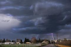 Spring Storm (Darrell Wyatt) Tags: lightning storm cloud rural country bolt trees