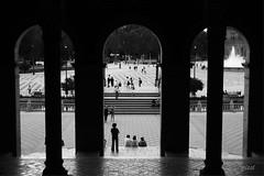 within the frame (gicol) Tags: arcos archi architecture backlit controluce monumento plaza piazza square plazadeespaña piazzadispagna sevilla siviglia andalucia colonne columns fountain fontana