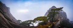 Tian Du Peak summit, Huangshan (thatkatmat22) Tags: tiandupeaksummit huangshan tian du anhui magical yellowmountain mountain trees outdoors sky fog clouds