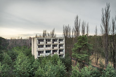 Hassled by Pines (Ralph Graef) Tags: prefab housing urbex abandoned plattenbau gssd dilapidated disused desolation derelicted decay creepy dystopia drabness vacancy
