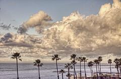 Sunday morning shower Rain 1-19 (rod1691) Tags: rain beach clouds palmtrees breakwater sea jetty oceanside california