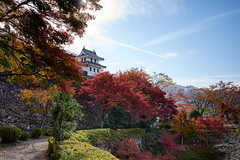 Gujo Hachiman castle (KaeriRin) Tags: japan landscape castle tree river water blue bright colourful colorful autumn leaves red green scenary scenery trees sky sony alpha sony7m2 28mm 28mm20