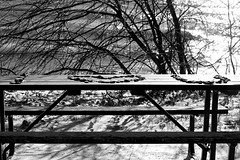 I <3 U (Rebecca Evelynn) Tags: sky lakeontario benches chickadee barredowls naturephotography presquileprovincialpark waves crazyclouds ice ducks woodpeckers floating islands bigrock moss greenmoss