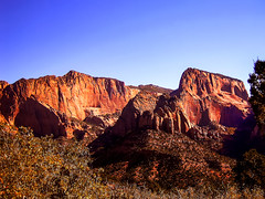 Kolob Canyons, Zion, Utah (alsimages1 - Thank you for 860.000 PAGE VIEWS) Tags: mountains colours red yellows scenic drive road visitor centre tours best sunsets rocks trees rock formations utah national monument simplysuperb