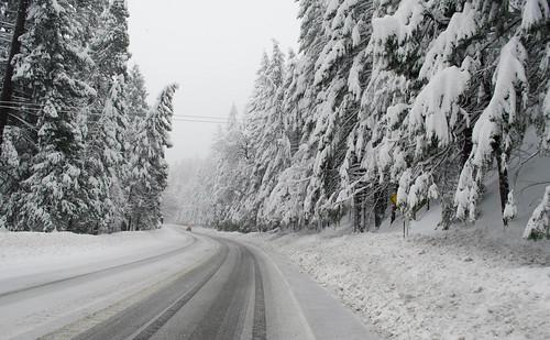 Twisty Road image