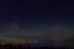 IMG_8120 (Contact: krista.rosenlof@gmail.com (Fin, Eng)) Tags: revontuli revontulet aurora northernlights northern lights starts nightsky sky night goodnight