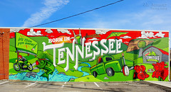 Mountain Dew - Born in Tennessee mural - East Nashville, Tennessee (J.L. Ramsaur Photography) Tags: tennesseehdr hdr worldhdr hdraddicted bracketed photomatix hdrphotomatix hdrvillage hdrworlds hdrimaging hdrrighthererightnow historyisallaroundus tennesseehistory sign signage it'sasign signssigns iseeasign signcity jlrphotography nikond7200 nikon d7200 photography photo nashvilletn middletennessee davidsoncounty tennessee 2019 engineerswithcameras musiccity photographyforgod thesouth southernphotography screamofthephotographer ibeauty jlramsaurphotography photograph pic nashville downtownnashville capitaloftennessee countrymusiccapital tennesseephotographer mountaindew dew mtndew bornintennessee itlltickleyourinnards dothedew barneyandallyhartman barneyhartman allyhartman itlltickleyoreinnards americana bluesky deepbluesky beautifulsky tennesseeoriginal tennesseetradition