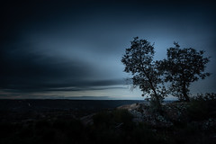 perptual iii (p_v a l d i v i e s o) Tags: 1635mm 5d3 adobelightroom almeida canon5d canon5dmk3 canonef1635mmliiusm canoneos5dmarkiii ef1635mmf28ii guarda leefilters littlestopper agreste dark dusk exposiã§ã£olonga graduatedfilter heavy longexposure longaexposiã§ã£o lr stones sunset tree trees
