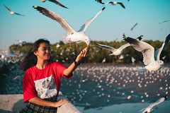 Young girl feeding seagulls (Patrick Foto ;)) Tags: teenage animal asian background bang beach beautiful beauty bird blue crackling cruise eat feather feed feeding female fly flying food freedom fun girl gull hand happiness happy lifestyle nature ocean outdoor people portrait pu scene sea seagull seagulls sky summer sunset thailand travel vacation water wild wildlife wing woman young samutprakan th