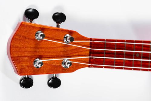 Guitar neck brown close-up