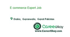 E commerce Expert (CareerOkay) Tags: e commerce expert jobs pakistan career okay in karachi lahore
