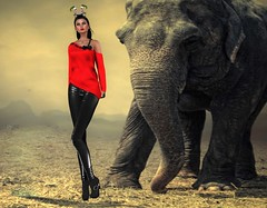 The Edge Of My Whimsy (Anne Daumig) Tags: slhairstyle virtual fashion women secondlife sl couture jewelry chic fantasy roleplay sexy avatar style fashionista blog makeup hairstyles shoes boots sandals footwear slfashionartphotography uniquecreations annedaumig lelutka maitreya meshbody meshhead shyladiggs onyxleshelle thoracharron jadenartresident bento collabor88 thearcade aleutia catalinastaheli osmia hannalindberg gabby111996resident breathe daisaadmiral zenith miffyhoirosca amias lanyjun opale tonyamilavskayaresident alaskametro alaskametropolitan arte miriamlemondrop
