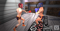 Duelists (Ts'n'Os) Tags: panthera st levs junglewood secondlife boxing