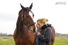 Rana 5 (quickclickmemories) Tags: unconditional love 18200mm horse horses owner equine paard paarden liefde bond art kwpn mare bay