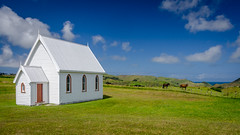 Little church with a big view (Stefan Marks) Tags: tasmansea animal church cloud equus horse nature ocean outdoor scenery sky kohekohe northisland newzealand