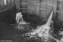 IMGP9348 (Brian H Whittle) Tags: blackwhite leedsliverpoolcanal rufford canal