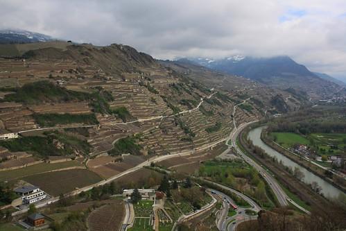 Wine terraces / Тераси с лозя