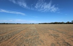 Part 870 Traegers Road, Temora NSW