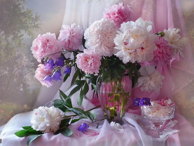 Обои розовый, букет, конфеты, пионы картинки на рабочий стол, раздел цветы - скачать