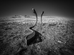 the hill serpents (liam.jon_d) Tags: adlfringe palmersculptures 7th 7thpalmersculpturebiennial mono abstract adelaidefringe adelaidehills art artist arty astraparker australia australian bw billdoyle blackandwhite cortensteel fringe fringe2016 landscape landscapeimset monochrome mountlofty mountloftyranges mtlofty mtloftyranges outdoor palmer palmersculpture palmersculpturebiennial palmersculpturebiennial2016 palmersculptures2016 pickmeset sa sculpture sculptureinlandscape seventh sinuous southaustralia southaustralian steel