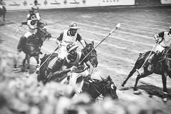 "POLO Highlights <a style=""margin-left:10px; font-size:0.8em;"" href=""http://www.flickr.com/photos/98289657@N05/47049256031/"" target=""_blank"">@flickr</a>"