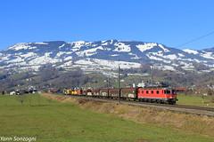 Rubis Suisse (Lion de Belfort) Tags: train chemin de fer montagne alpes herbe champ suisse schwytz neige 620 re 66 77 077 0778 steinen gotthard gothard sbb cff ffs