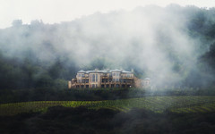 Mansion in the Mist (elektron9) Tags: california cali ca usa us unitedstatesofamerica westcoast bestcoast mansion winery farming agriculture grapes wine home hill field treebackdrop green fog foggy mist misty mountainfog uphigh eerie gorgeous beautiful mysterious clearing windows rooms cupertino inspirationpoint stevenscreek