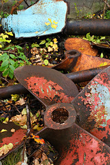 Propeller Alley (Doris Burfind) Tags: portdover shipyard propeller metal abandoned decay weathered