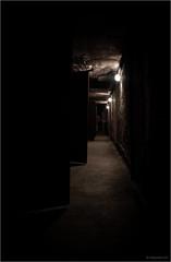 03 dark corridor (mike goehler) Tags: architecture architektur abstract lost place tempelhof flughafen thf schatten shadow