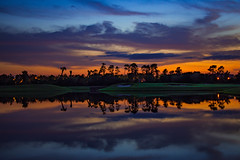 Dusk Reflections on the Lake (Will-Jensen-2020) Tags: nationalgeographic society magazine luminosity best silhouette outdoor total wet creative landscape flickr artistic moment magic world prime lens 35mm light beautiful planet earth digital color photography nikon d7200 dslr usa florida orlando lake dusk sunset reflection water tree cypress pine sky clouds night evening palm