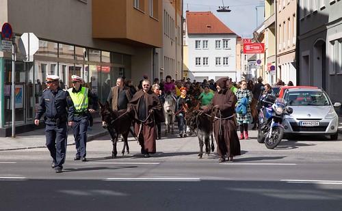 Eselwanderung -donkey walk