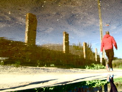 Quadruped (andressolo) Tags: human animal walk walking reflections reflection reflejos puddle water agua man people