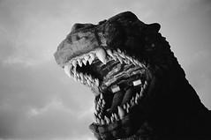 Godzilla (Adam Chin) Tags: zeissikon zeissdistagon35mm14 kodaktrix bw tokyo japan godzilla hotelgracery