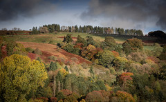 Ridge (paullangton) Tags: autumn brecon wales trees colour hill field nature landscape leaves sky clouds heather red green blue