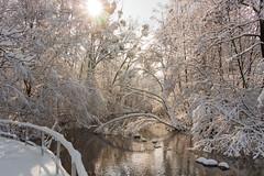 Winter Wonderland (lensflare82) Tags: winter snow schnee sonne sun munich münchen city stadt natur nature outdoor landscape landschaft panorama wasser water atmosphere atmosphäre shutterbug eos canon 700d