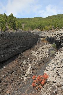 La Palma - Lava flow of the Volcán de San Juan