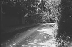 Illoura Road (photo 6) (Matthew Paul Argall) Tags: beirettevsn fixedfocus 35mmfilm blackandwhite blackandwhitefilm kentmere100 100isofilm road street illouraroad