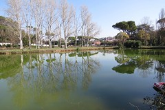 Villa Ada - Roma (RobAnt57) Tags: roma villa riflessi laghetto alberi