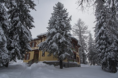 Cottage in the snow (mystero233) Tags: cottage house home snow winter tree white slovakia slovensko europe vysoketatry tatry hightatras tatras np nationalpark strbskepleso lake outdoor forest landscape