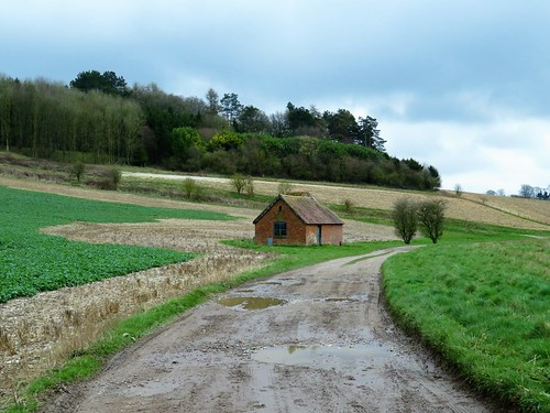 Walbury Hill and the Test Way, Berkshire | Christopher