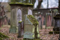 Jüdischer Friedhof Darmstadt (nordelch61) Tags: darmstadt hessen friedhof jüdisch juden grab gräber grabstätte alt verwittert moos grave graveyard cemetery 3deffekt historisch sandstein grabstein bokeh samyang85mmf15