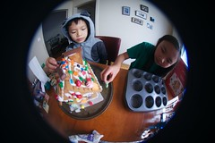 4994 Many Looks (mliu92) Tags: home sanmateo gingerbread house candy frosting calcifer son figgy daughter belomo peleng 835