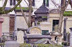 130 - Paris - Février 2019 - cimetière de Montmartre (paspog) Tags: paris france cemetery cimetière froedhof cimetièredemontmartre montmartre février februar february 2019