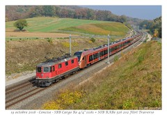 "Re 4/4"" + Flirt Traverso SOB - Concise (CC72080) Tags: re420 re44 cff sbb ffs sob flirt traverso stadler concise extrafahrt train zug voralpenexpress treno rabe526 güterzug locomotive lokomotive locomotiva automotrice triebzug"