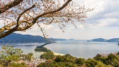 DSC01295 (Neo 's snapshots of life) Tags: japan 日本 京都 kyoto amanohashidate 天橋立 あまのはしだて sony a73 a7m3 24105 伊根