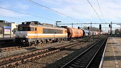 RFO-1831 komt onderweg met zijn graantrein door station Weesp. 20190109_IMG_2120. (Gerard-E) Tags: 1831 tagnpps wasco vtg getreide cereals cereales graan stortgoed goederen wagens eloc locomotive locomotief ns1600 ns1800 graantrein train zug