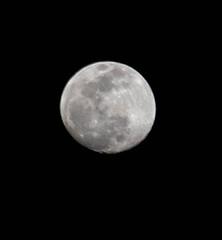 untitled-0146.jpg (JIM Mourgos) Tags: chinatown moonshots nikond750 sanfrancisco berkeley february morgiepix newpix 2019 northbeach