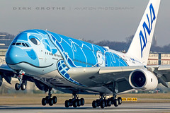 ANA_A380_JA381A_20190225_XFW-2 (Dirk Grothe | Aviation Photography) Tags: ana all nippon airways ja381a xfw turtle honu