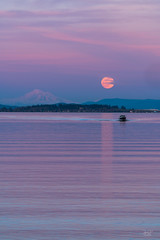 Mt Baker and the moon (cdnfish) Tags: superwormmoon millbaybc millbay cowichanvalley cowichan cobblehill clouds sunset moonrise fullmoon vancouverisland bc britishcolumbia water reflection mtbaker snow sonya7r3 sony70200mmgm formatthitech formatthitechcp landscape landscapephotography boat bluehour canada